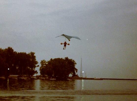 dolphin pics0002 557x411